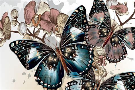 imagenes de rosas y mariposas bellas hermosas y bellas mariposas entre flores 69828