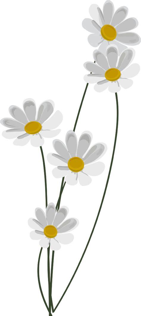 Декоративные цветы для дизайна участка фото