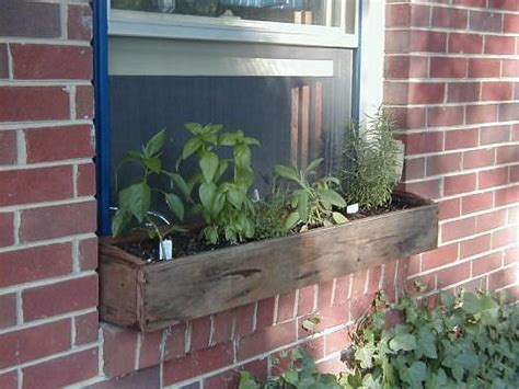 window box herb garden windowbox herb garden laidback gardener