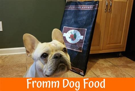 fromm puppy dynamite food review in 2017 us bones