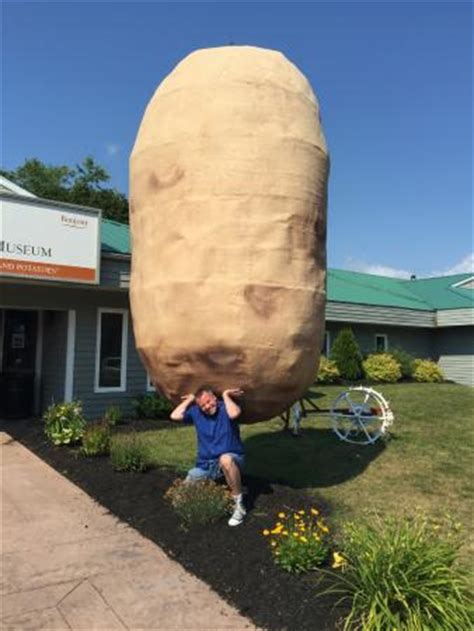 Canadian Potato by Photo0 Jpg Picture Of Canadian Potato Museum O Leary