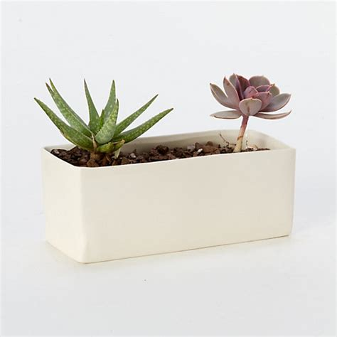 Ceramic Planters Rectangular by Ceramic Rectangle Planter Terrain