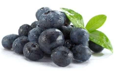 carbohydrates blueberries blueberries health benefits god s healing plants