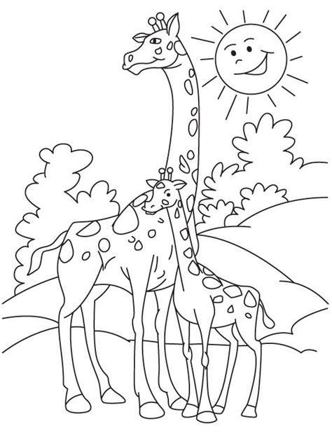 tutorial gambar hewan untuk anak belajar mewarnai gambar hewan jerapah untuk anak