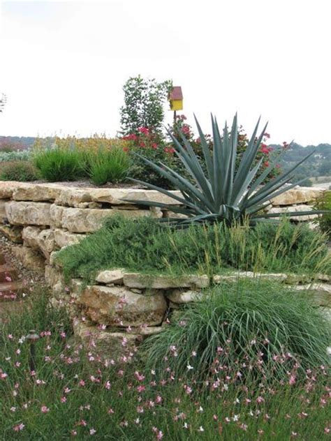 Hill Country Gardens - 53 best images about shade garden on