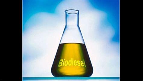 membuat biodiesel dari minyak kelapa produsen biodiesel tuntut eropa hapus bea antidumping