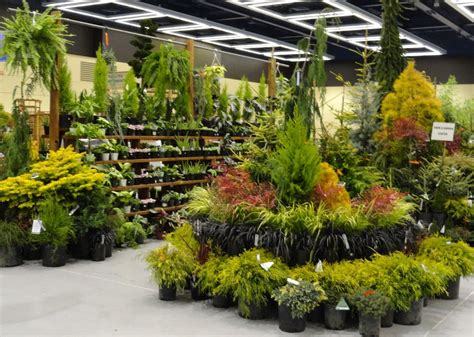 plant center displays  retail
