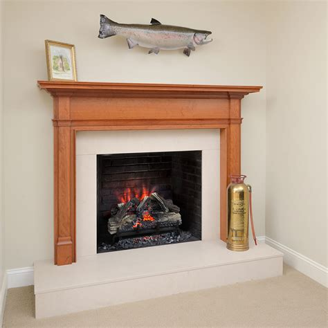 Napoleon Fireplaces Ottawa by Electric Fireplace Insert Napoleon 28 Images Napoleon