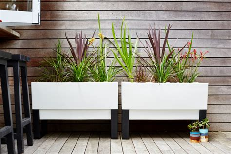 Modern Planters Outdoor by Garden Planters Modern Plant Pots To Create