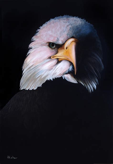 eagle eye painting  brent ander