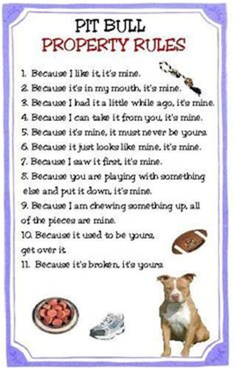 pit regulations pit bulls for on pit bull pit bull