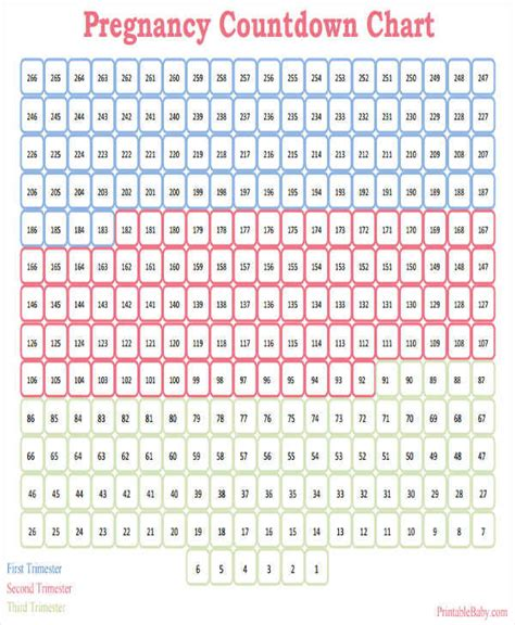 Countdown Calendar 8 Countdown Calendar Template Free Sle Exle