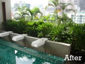tropical planting in indoor pool garden bangkok thai