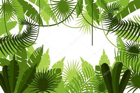 Dschungel Pflanzen by Dschungel Pflanzen Hintergrund Stockvektor 169 Scorpion333
