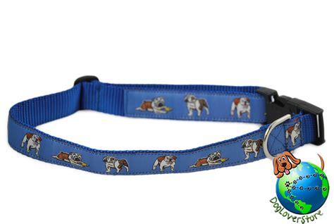 large breed collars bulldog breed adjustable collar large xl 13 26 blue ebay