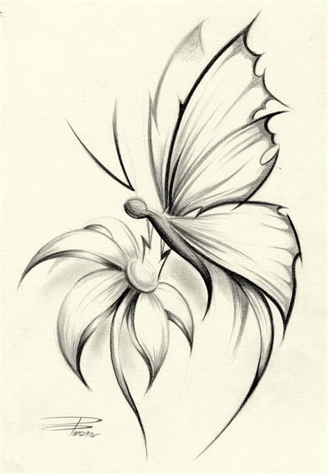 tattoo butterfly sketches butterfly flower by davepinsker on deviantart inkme