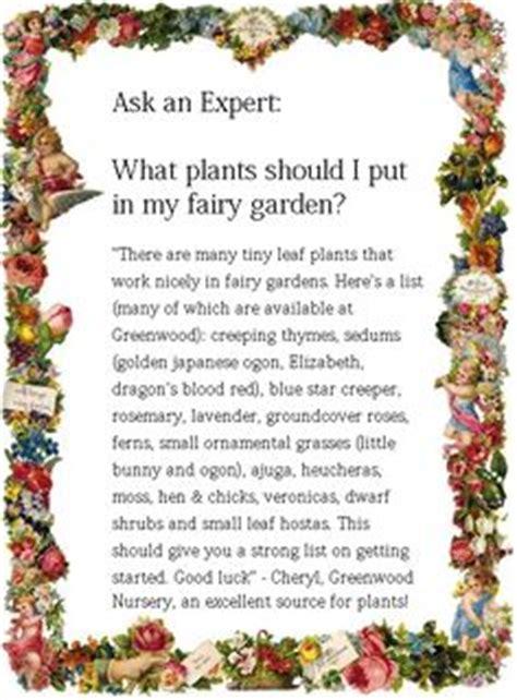 Fairy Garden Plants On Pinterest Miniature Miniature What Flowers Should I Plant In My Garden