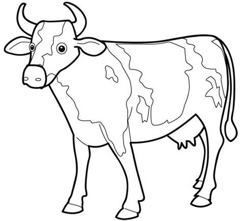 cow coloring pages printable cow coloring pages coloring me