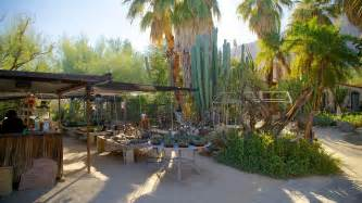 Moorten Botanical Garden Palm Springs Moorten Botanical Garden And Cactarium In Palm Springs California Expedia
