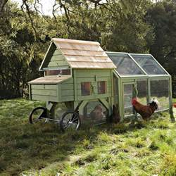 alexandria chicken coop and run the green
