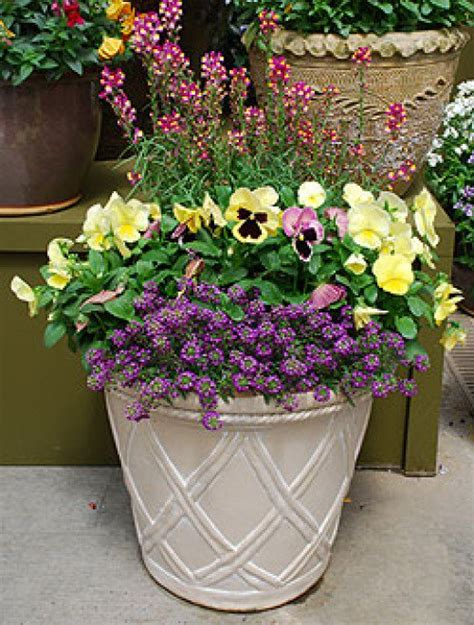 flower planter ideas oman landscape ideas for container planting uk