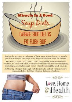 Jump Start Detox Drink Directions by The 28 Day Shrink Your Stomach Challenge Veggie Flush