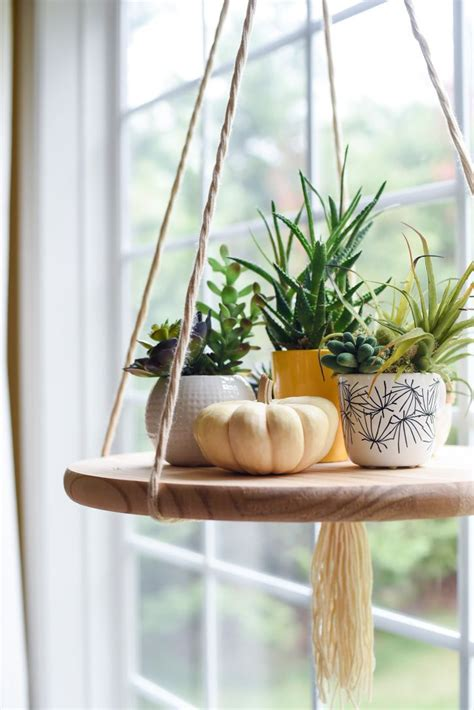 Window Plant Hanger - 25 best ideas about shelf window on