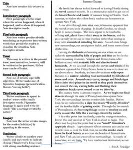 Exles Of Discriptive Essay by Descriptive Essay Cypher