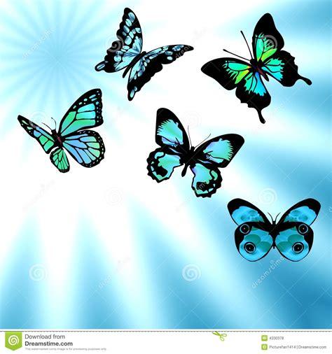 imagenes mariposas libres aire azul de las mariposas fotos de archivo libres de