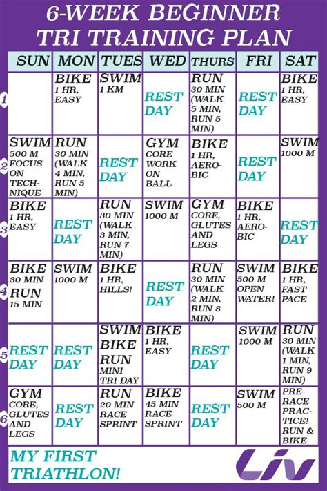 25 best ideas about triathlon training plan on pinterest
