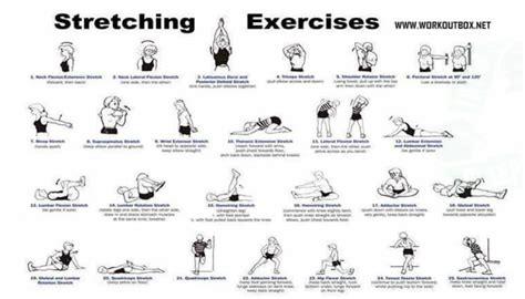 best flexibility exercises exercises for flexibility healthy fitness