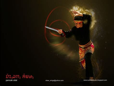 martial arts silat harimau the deadly beauty silat by fadil on deviantart