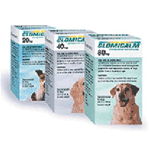 clomipramine for dogs clomicalm clomipramine hydrochloride tablet for dogs medications