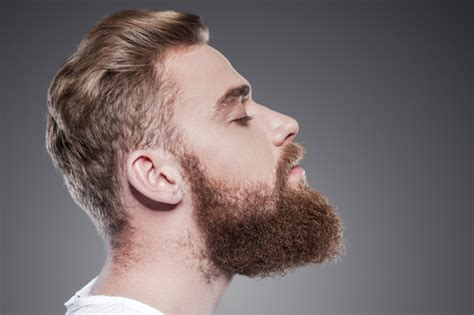 Beard Shedding by Beard Grooming How To Shave Maintain A Beard Hush