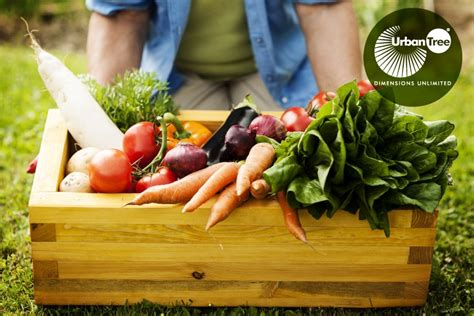 best organic foods 20 best organic food stores in chennai organic shops in