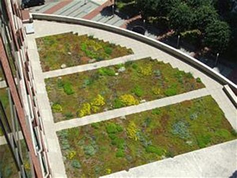 design guidelines green roofs extensive vegetative roofs wbdg whole building design guide