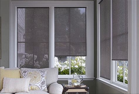 Sunscreen Blinds Sunscreen Roller Shades Solar Window Shades At Comfort Blinds