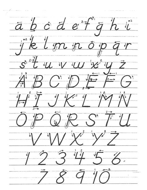 free printable d nealian alphabet flash cards 17 best images about handwriting on pinterest