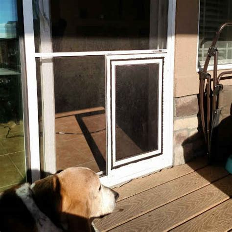 Sliding Screen Door With Pet Door Built In by Sliding Glass Patio Doors In Denver And The Front