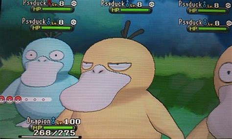 808 berry place section 42 butt berry how many times has this psyduck been ko d so