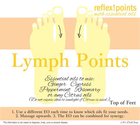 Essential Oils For Lymph Detox by 25 Best Ideas About Lymphatic System On