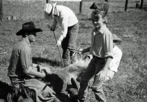 filme schauen the ranch hanna ranch online schauen und streamen deutsch 1280p