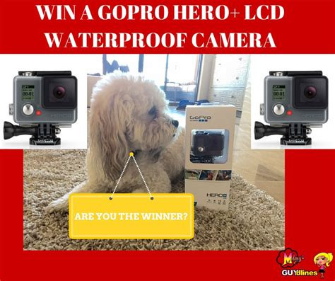 Gopro Daily Giveaway How To Win - enter to win a go pro ends 9 08 15 blog giveaway directory