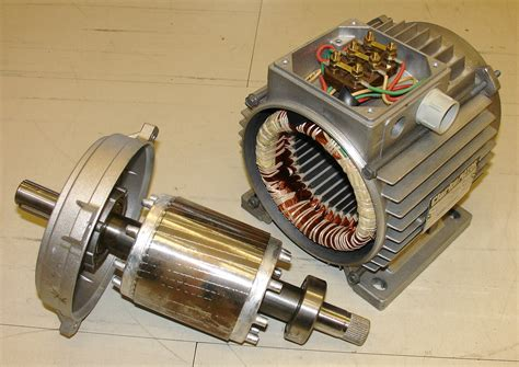 motor rotor replacing the bearing of your cabinet saw motor by