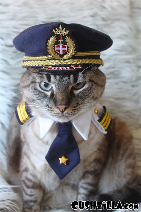 pilot dogs cushzilla captain pilot for cats and dogs small