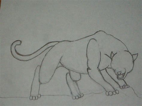 Panther Drawing Outline
