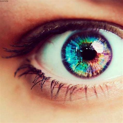rainbow colored contacts 25 best ideas about rainbow on rainbow