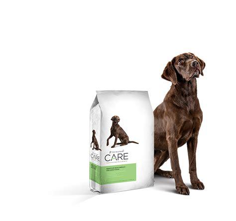 best food for sensitive skin grain free limited ingredient food for dogs with sensitive skin care