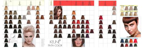 keune tinta color shades chart keune tinta color in