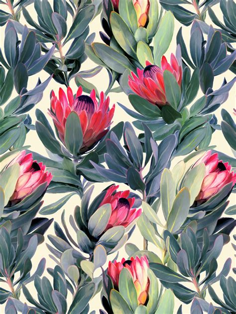 floral pattern artwork painted protea pattern art print by micklyn society6
